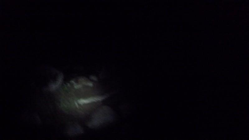 Wanderweg im Dunkeln