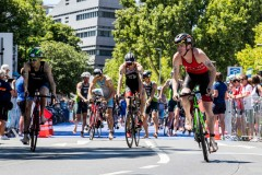 JK_Bitburger_Triathlon_Bundesliga_Duesseldorf_1626